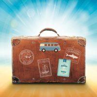 Smarrimento bagagli, cani e gatti in vacanze SalvaDenaro